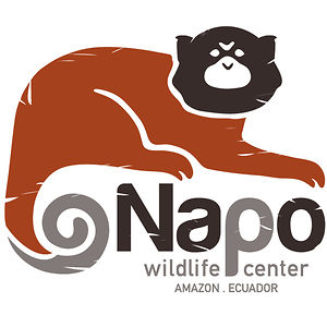 Profile picture for Napo Wildlife Center Ecolodge