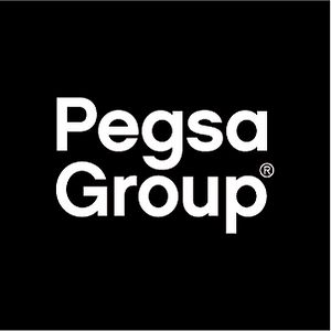 Profile picture for PegsaGroup