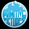 Primitive Pictures