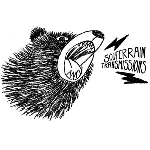Profile picture for Souterrain Transmissions