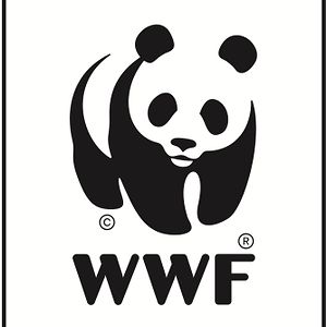 Profile picture for OneWWF