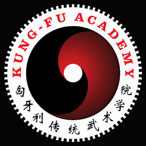 Profile picture for Kung-fu Akadémia
