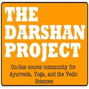Profile picture for The Darshan Project