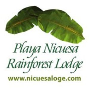 Profile picture for Playa Nicuesa Lodge