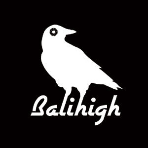 Profile picture for Balihigh Aerial Media