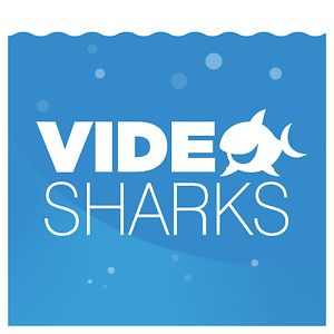 Profile picture for VideoSharks