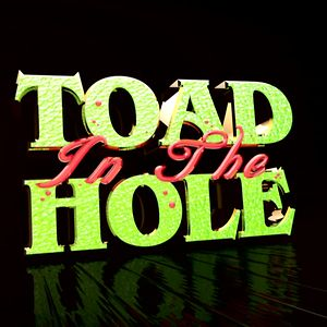 Profile picture for Toad in the Hole Productions