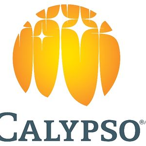 Profile picture for Calypso Theme Waterpark