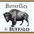 Butterflies & Buffalo