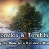 Hebrew Restoration Torah Insight