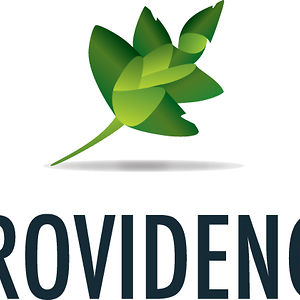 Profile picture for Providence World