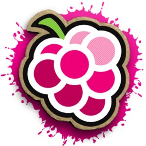 Profile picture for Raspberry Animation
