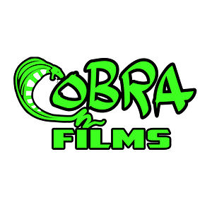 Profile picture for cobra films