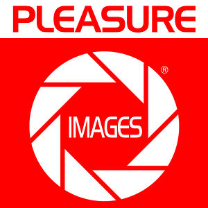 Profile picture for Pleasure Images