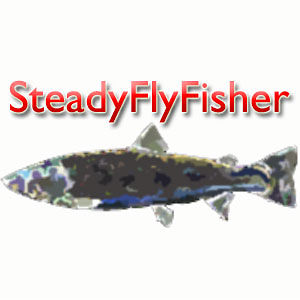 Profile picture for SteadyFlyFisher