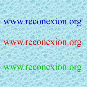 Profile picture for www.reconexion.org