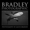Bradley Photographic