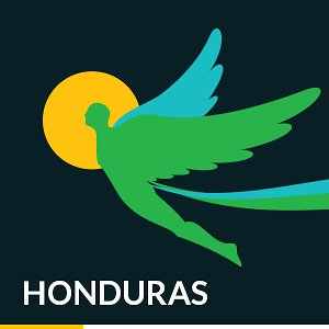 Profile picture for FestivalIcaroHonduras
