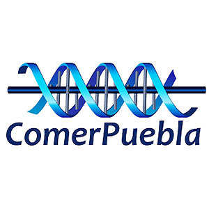 Profile picture for COMER PUEBLA
