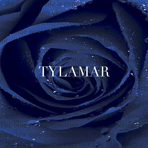Profile picture for Tylamar