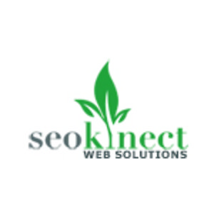Profile picture for Seokinect Web Solutions