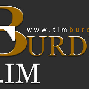 Profile picture for Tim Burden