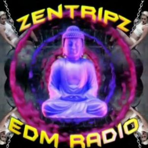 Profile picture for ZentripZ EDM