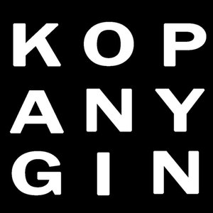 Profile picture for max kopanygin