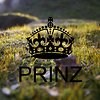 Prinz production