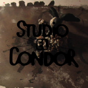 Profile picture for Studio El Condor
