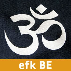 Profile picture for EFK Group