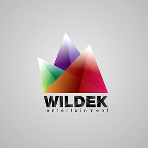 Profile picture for Wildek Entertainment