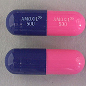 Profile picture for Buy Amoxicillin