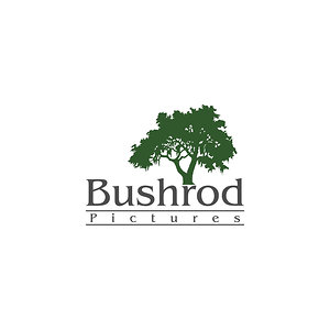Profile picture for Bushrod Pictures