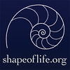 Shape of Life