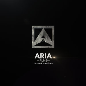 Profile picture for Aria Matin