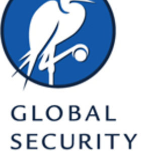 Profile picture for Global Security Institute
