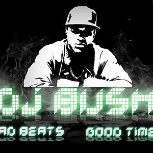 Profile picture for DJ BUSH