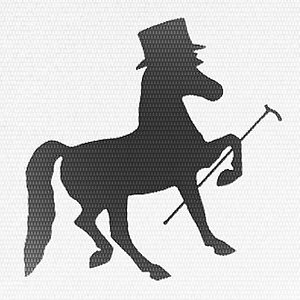 Profile picture for Fancy Horse Films