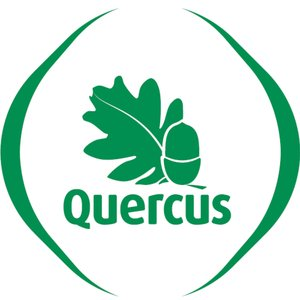 Profile picture for Quercus Porto