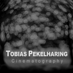 Profile picture for Tobias Pekelharing