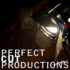 Profile picture for Perfect Cut Productions