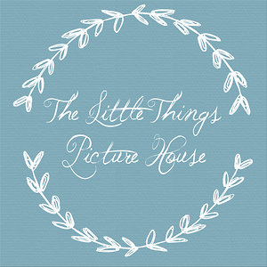 Profile picture for The Little Things Picture House