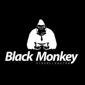 Profile picture for Black Monkey Studio