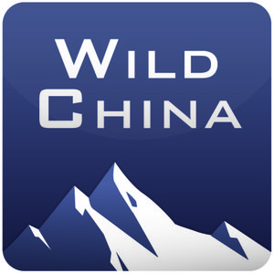 Profile picture for WildChina Travel