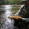 Ethan Law, Ammala Fly Fishing