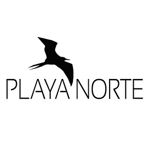 Profile picture for Playa Norte Video Productions