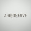 Audionerve