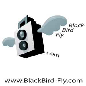 Profile picture for Blackbird-fly.com