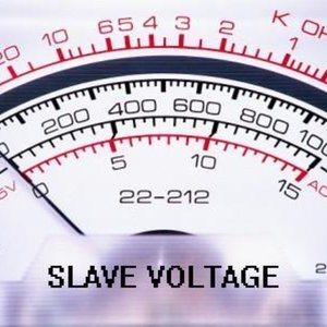 Profile picture for Slave Voltage